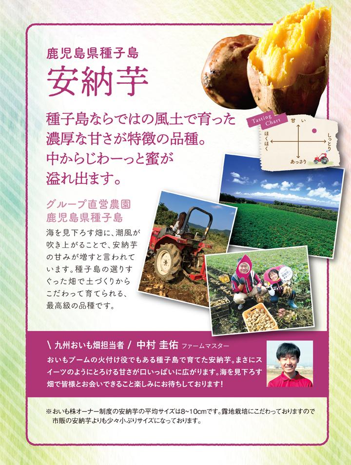 3 安納芋商品ページ
