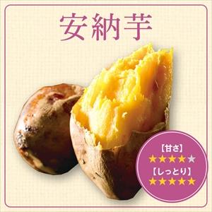 安納芋収穫祭